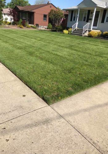lawn_care_180315031748